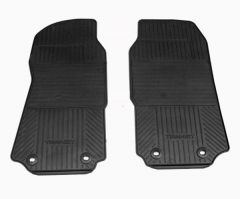 Genuine Rubber Floor Mat (2pc)